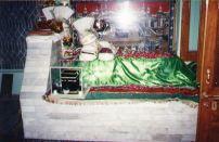Shah Hussnain (9)